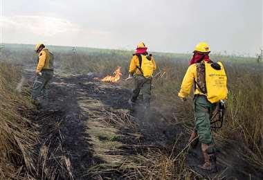 Bomberos extremaron esfuerzos para acabar con el fuego