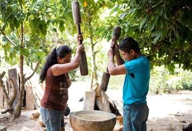 Pueblos indígenas de tierras bajas asumen medidas de prevención