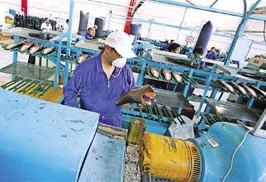 El sector industrial concentra el 14% del empleo en Bolivia/Foto: EL DEBER