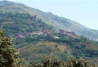 Chulumani, municipio de los Yungas I Foto: archivo.