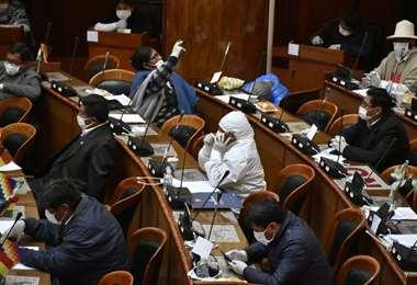 Sesión de la Cámara de Diputados. Foto: APG Noticias
