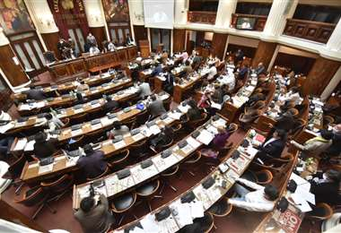 Los diputados aprobaron un polémico proyecto (Foto: APG Noticias)