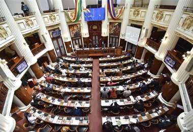 La bancada del MAS se impuso en la votación (Foto: APG Noticias)