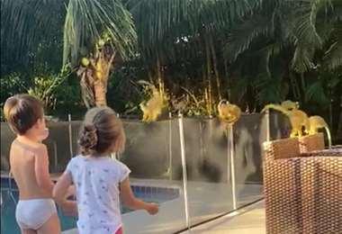 Dos niños del Urubó quedaron fascinados con la visita de estos capuchinos