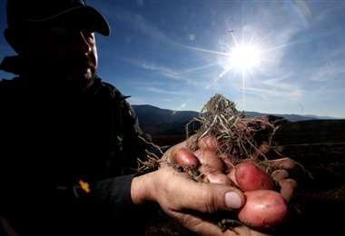 En las zonas rurales se produce la mayoría de alimentos que se consumen en Santa Cruz