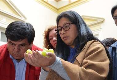 Eva Copa en un acto en el Senado. Foto: Prensa Senado.