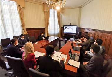 Bolivia propició la cita y se desarrolló de forma virtual/Foto: Ministerio de Relaciones Exteriores