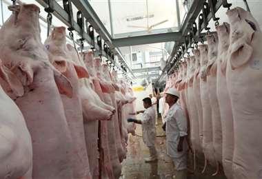 La demanda de cerdo bajo e hizo que el precio se caíga