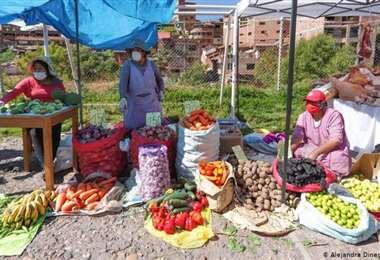 Olvido, pobreza y pérdidas en los campos de América Latina