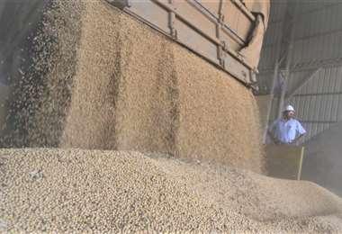 Bolivia es un gran productor de granos y alimentos/Foto: Gabriel Vásquez