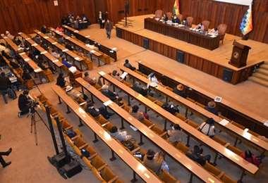 La legisladora plantea modificar la composición del Congreso.