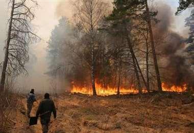 Las llamas llegaron hasta cerca de la planta nuclear. Foto Internet