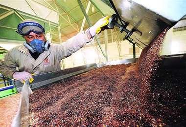 El sector de la manufactura recibió un 35,6%