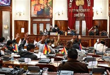 La Asamblea aprobó la norma el 18 de junio/Foto: ABI