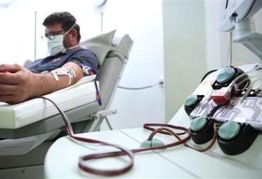 El plasma contiene anticuerpos contra el coronavirus. Foto referencial/Getty