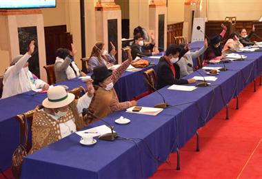 Los senadores sesionaron la noche del lunes. Foto. Cámara de Senadores