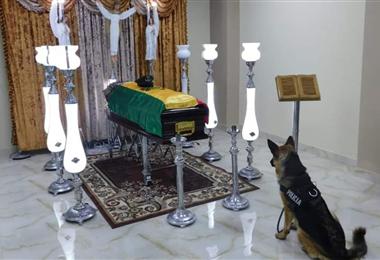 La imagen del Can que se disparó en las redes sociales. Foto. Policía de Potosí