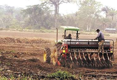 El sector agropecuario es uno de los motores de la economía de Bolivia. Foto. Internet