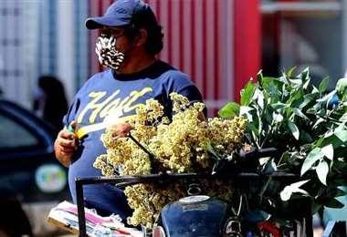 Muchas personas se ganan la vida vendiendo hierbas medicinales/ Foto: Hernán Virgo