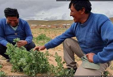 Foto: Facebook Helvetas Bolivia