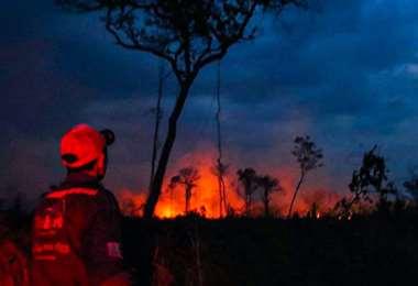 En 2019, se quemaron 5,3 millones de hectáreas a escala nacional. Fotos: Ipa Ibañez