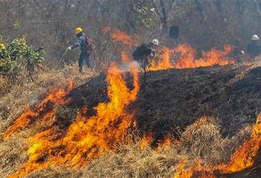 Según la ABT, en 2019 se quemaron 5,3 millones de hectáreas en Bolivia. Foto: Ipa Ibañez