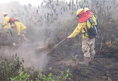 La Armada y el Ejército también contribuyen en labores de mitigación del fuego