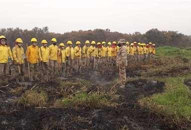 Los bomberos forestales trabajan en la liquidación del fuego /Foto: Jorge Ibáñez