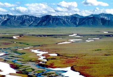 El  el Refugio Nacional de Fauna Ártica en Alaska. Foto Internet