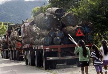 Los bloqueos limitaron la movilización de madera desde los centros de producción /Foto: EL DEBER