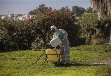 Un trabajador durante las labores de fumigación contra los mosquitos. Foto Europa Press