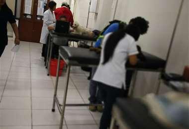 En el hospital veterinario de la 'U' hay diversas atenciones (Foto: Redes)