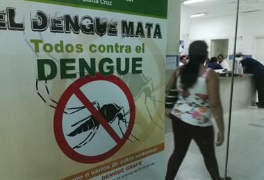 El dengue es una enfermedad que se transmite por el mosquito Aedes Aegypti. Foto. Hernán V