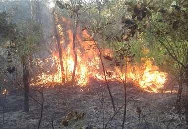 En agosto se producen incendios constantes en la zona de la Chiquitania