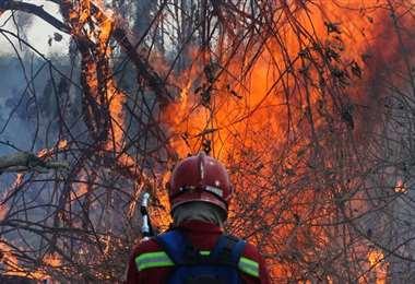En 2019 se quemaron 5.3 millones de hectáreas en el país. Foto: Ipa Ibañez