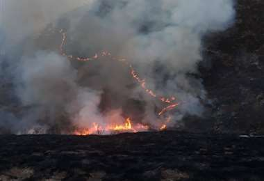Incendio forestal en Pajchani, Tarija