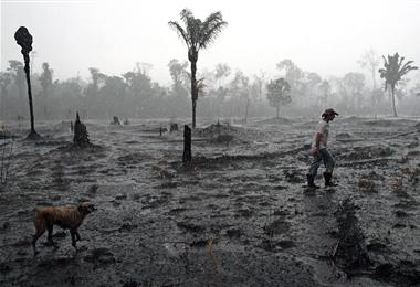 Un agricultor brasileño y su perro caminan por una zona quemada de la selva amazónica, cerca de Porto Velho, estado de Rondonia en Brasil. Foto. AFP