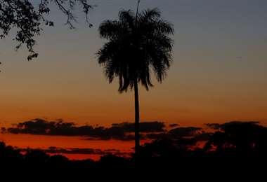 Buen clima para este fin de semana Foto: Ricardo Montero