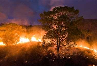 Incendio del Pantanal en Mato Grosso. Foto AFP