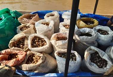 Los productos fueron donados a una comunidad de la zona