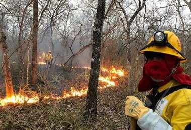 Los bomberos forestales en pleno trabajo /Foto: Limberg Cambará