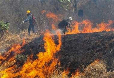 En lo que va de año se quemaron más de 330.000 hectáreas. Foto referencial: Ipa Ibañéz