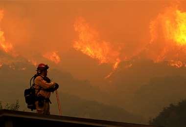 Varios países del mundo combaten este desastre natural