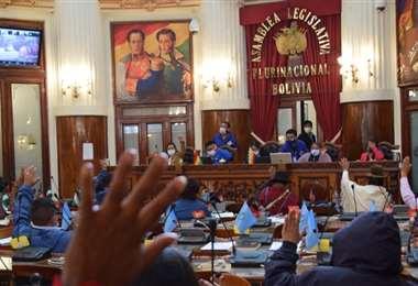 El MAS avanza en la aprobación de leyes (Foto: ALP)