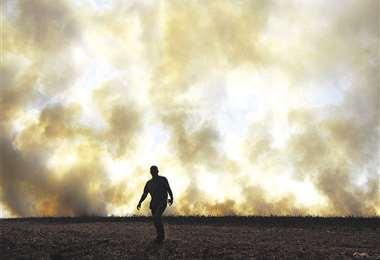 Brasil declara el estado de calamidad en el Pantanal por el fuego. Foto: AFP