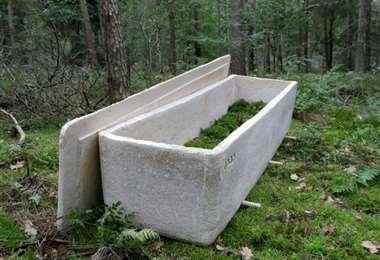 El ataúd fabricado en Holanda. Foto Internet