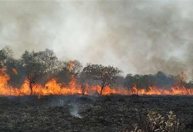 Las llamas avanzan en la región. Foto: Gobernación de Santa Cruz