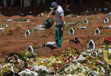 Cementerio de Vila Formosa en San Pablo (Brasil). Foto AFP
