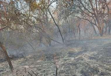 Los incendios también avanzan en Chuquisaca. Foto: Correo del Sur