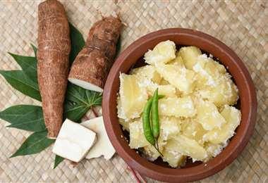 La yuca es uno de los principales ingredientes de la cocina cruceña